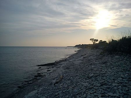 Дикий пляж Тонкий мыс Геленджик фото 1