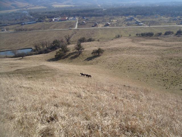 Вид с краю 3