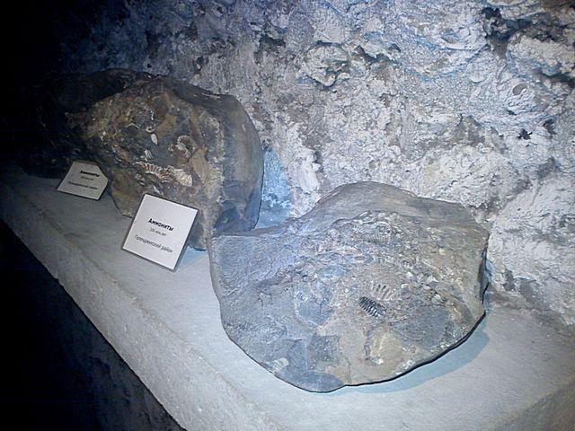 Пещера 11