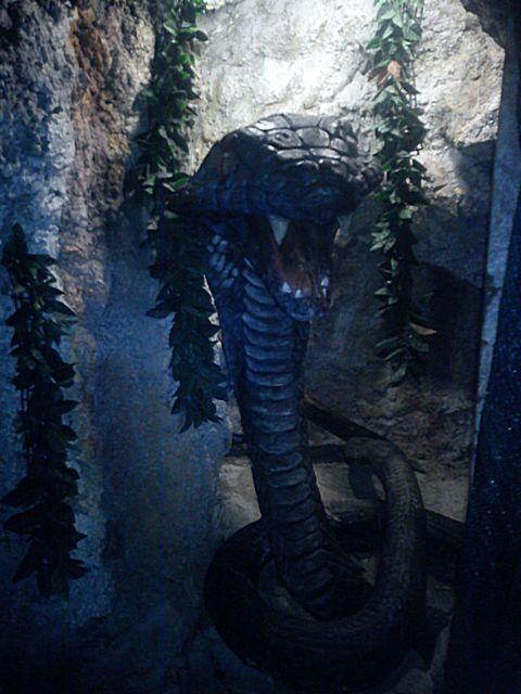 Пещера 13