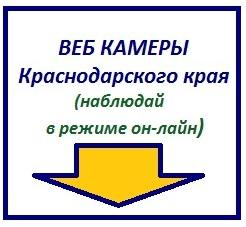Веб камеры Краснодарского края