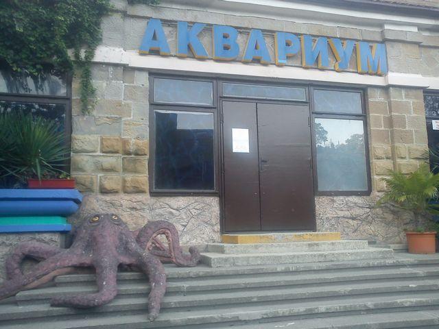 Аквариум на Новой Мацесте