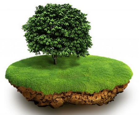 Самозахват земли 5