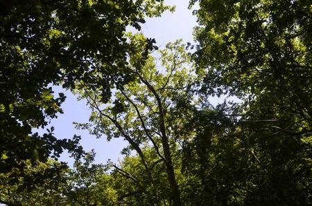 Природа Геленджика