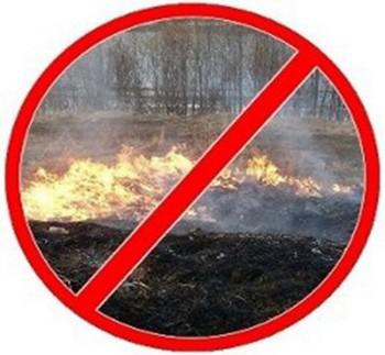 Запрет на сжигание травы