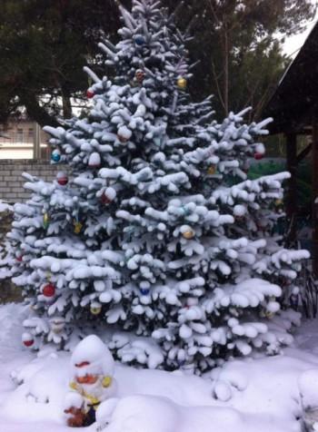 Кабардинка 31 декабря