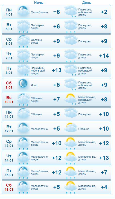 Погода в сочи 1 января