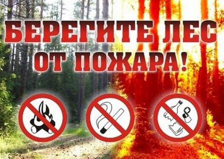 Берегите лес от пожара