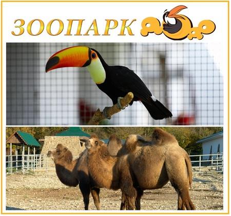 Зоопарк ДоДо