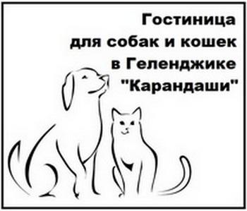 gostinica-dlya-sobak-i-koshek-v-gelendzhike-karandashi