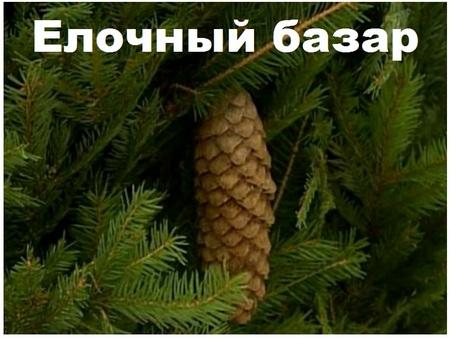 elochnyj-bazar