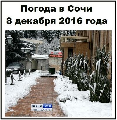 pogoda-v-sochi