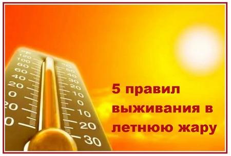 5 правил выживания в летнюю жару