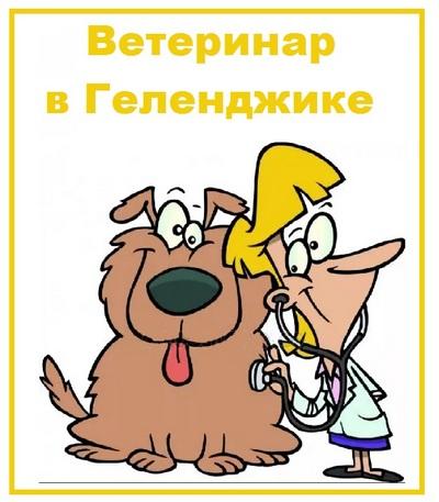 Ветеринар в Геленджике