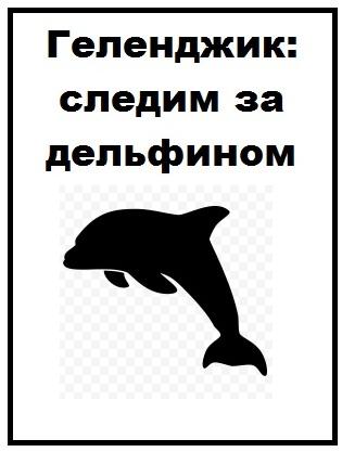 Геленджик следим за дельфином