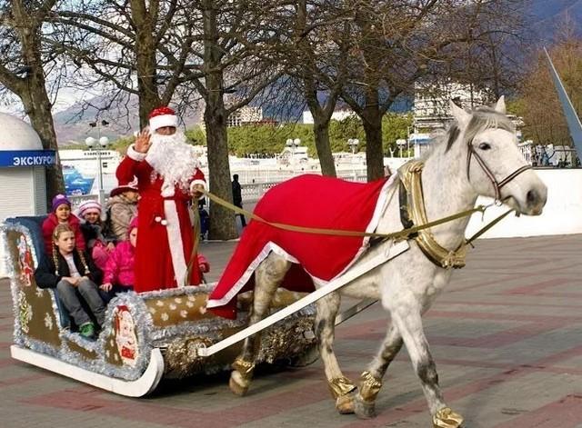 Дед Мороз в Геленджике на санях