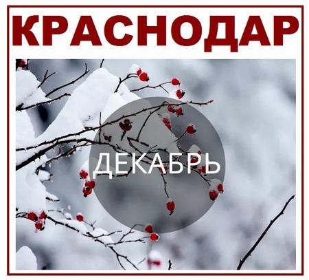 Краснодар декабрь