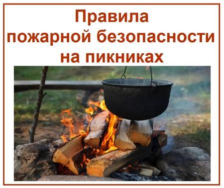 Правила пожарной безопасности на пикниках