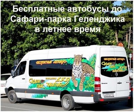 Бесплатные автобусы до Сафари-парка Геленджика в летнее время, 2018 год