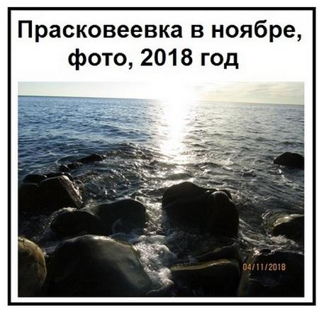 Прасковеевка в ноябре, фото, 2018 год