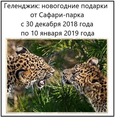 Геленджик новогодние подарки от Сафари-парка с 30 декабря 2018 года по 10 января 2019 года