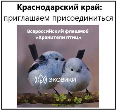 Краснодарский край приглашаем присоединиться