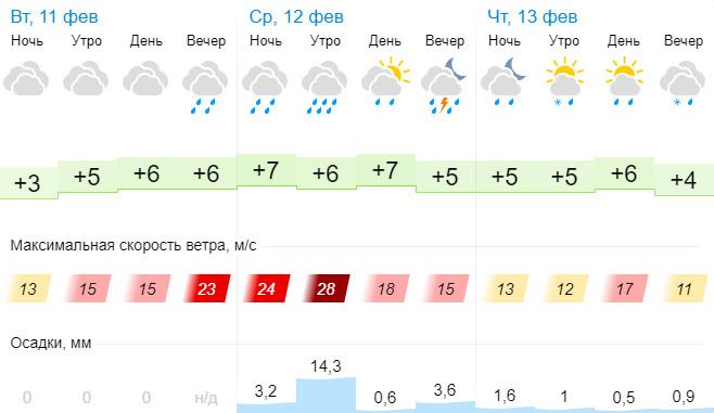 Погода 11 - 13 февраля