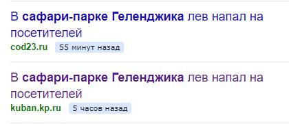 Яндекс ЧП
