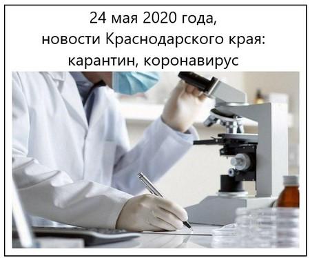 24 мая 2020 года, новости Краснодарского края карантин, коронавирус