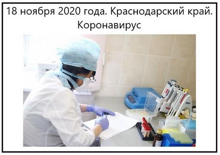 18 ноября 2020 года. Краснодарский край. Коронавирус
