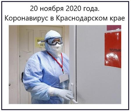 20 ноября 2020 года. Коронавирус в Краснодарском крае